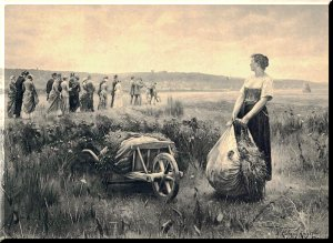 A picture depicting a woman standing in a field looking at others standing in the field awaiting Jesus' return