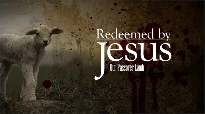 "Picture of a Lamb with the words ""Redeemed by Christ our PASSOVER"""